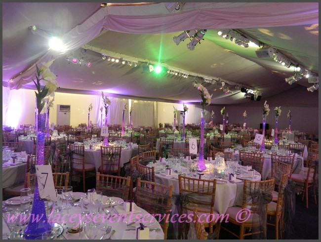 Laceys event services galleries and photos laceys event services 0 comments junglespirit Gallery